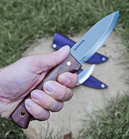 Find out if the Condor Bushlore Knife is the best bushcraft knife