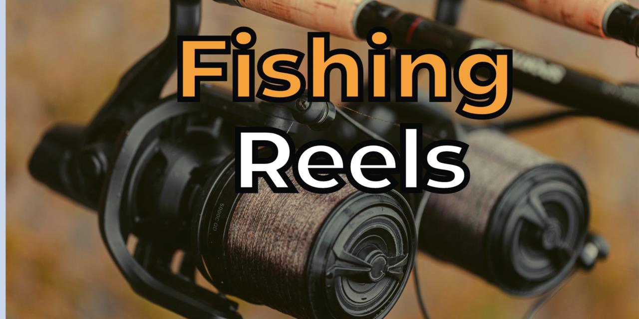 5 Best Fishing Reels in 2021