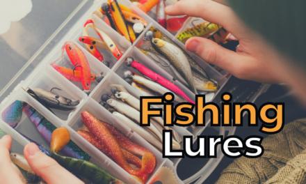 Top 4 Best Fishing Lure Kits